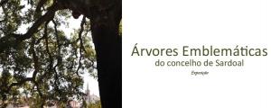 """Roteiro das """"Árvores Emblemáticas do Concelho de Sardoal"""" e exposição no Cá da Terra"""