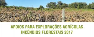 Apoios para Explorações Agrícolas Incêndios florestais 2017