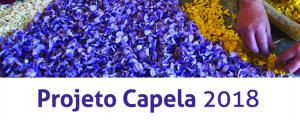 """""""Projeto Capela 2018"""" no espaço Cá da Terra"""