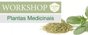 Workshop de Plantas Medicinais no Cá da Terra